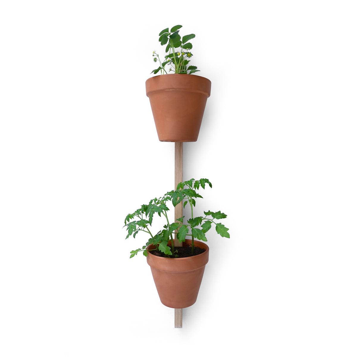 edition compagnie xpot 2 pots