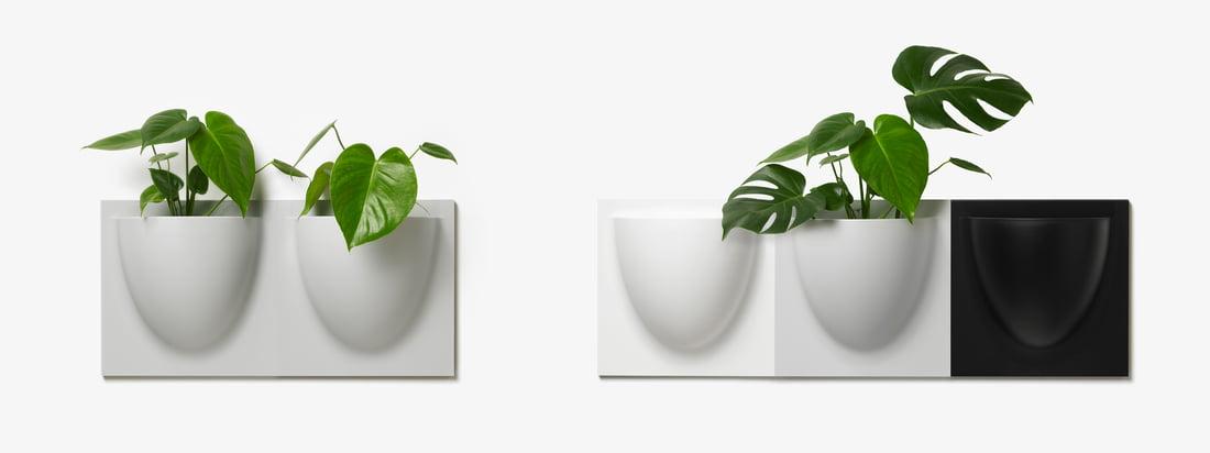 Verti Copenhagen - Pots muraux