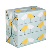 Pleased to meet - Papier-cadeau Birds