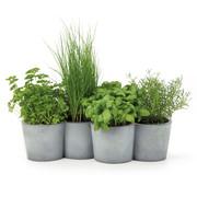 Konstantin Slawinski - Pots à herbes aromatiques Potpot