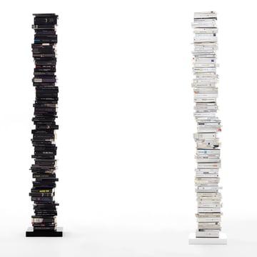 Opinion Ciatti  Original Ptolomeo Bibliothèque - Black & White