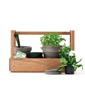 Design im Dorf - Bänkchen & Mehr, chêne - Plantes