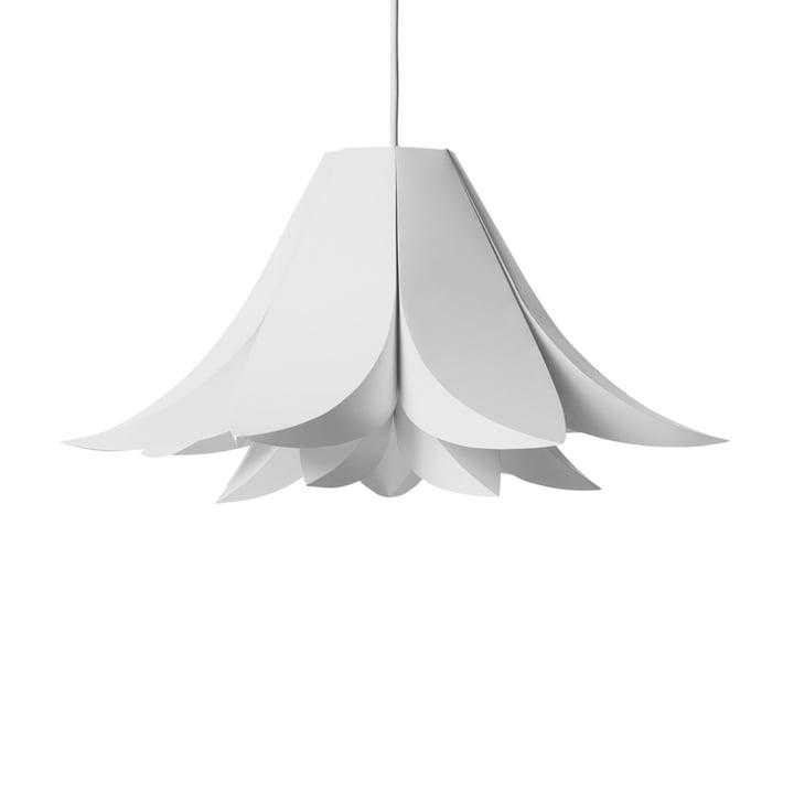 Le petit Norm 06 Luminaire