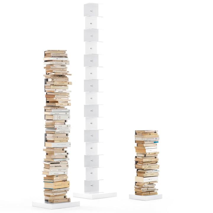 Opinion Ciatti  Original Ptolomeo Bibliothèque - tailles