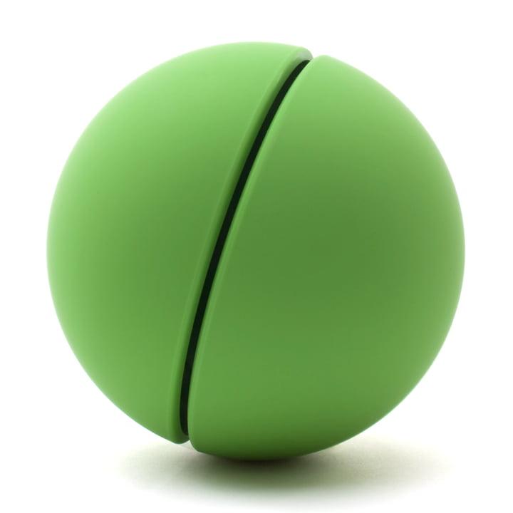 Authentics - Tirelire Giro, vert