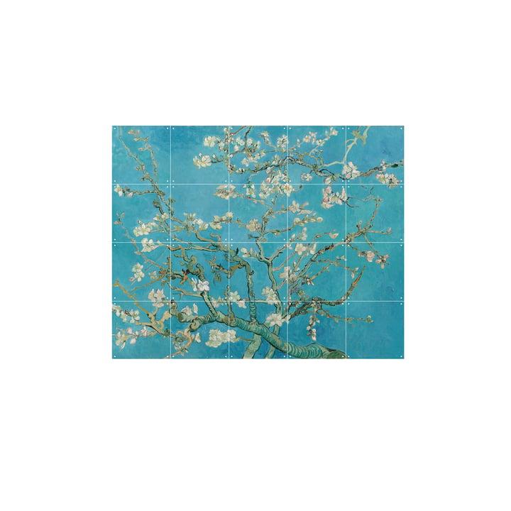 Amandier en fleurs (Vincent Van Gogh) 100x80cm de IXXI