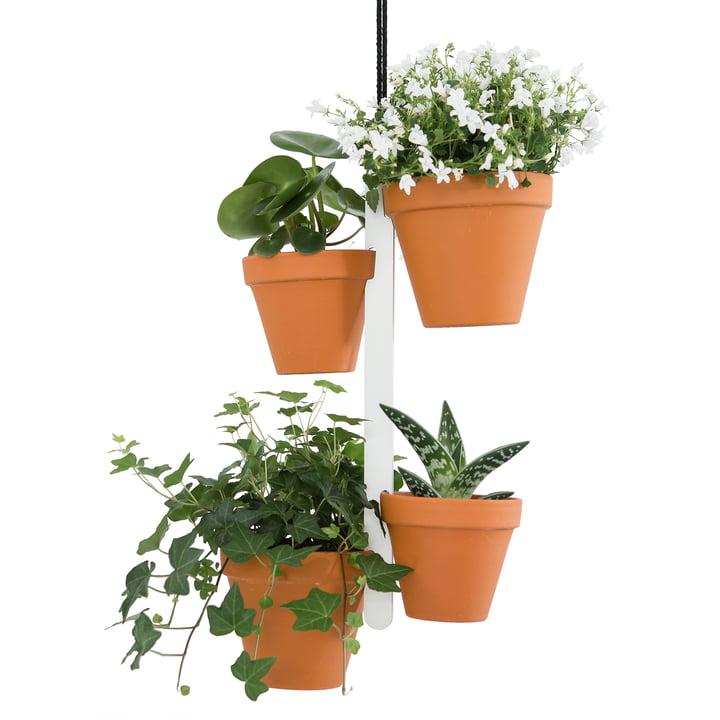 Studio Dreimann - Support pour pots de fleur