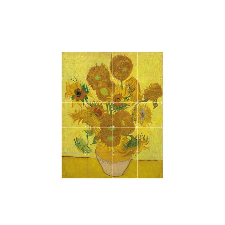 Tournesols (Van Gogh) 80x100cm d'IXXI