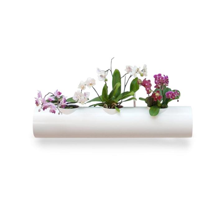Tube pour Jardin suspendu par urbanature en blanc