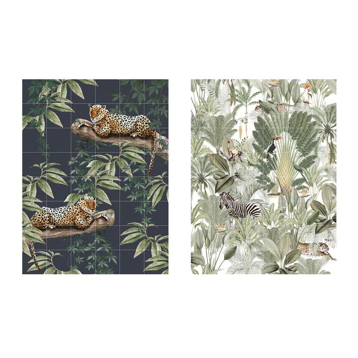Refroidir dans la jungle & dans la nature 120 x 160 cm par IXXI