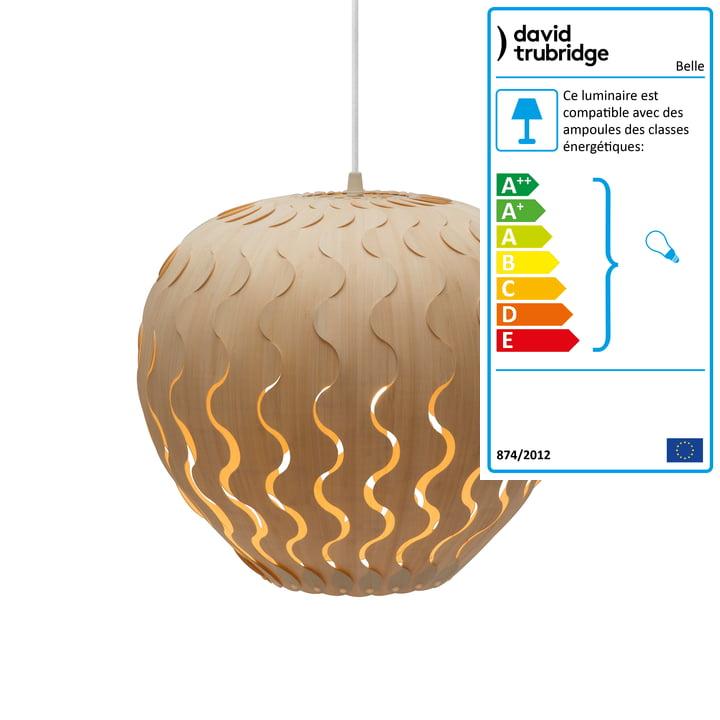Belle lampe suspendue Ø 33 cm par David Trubridge en nature des deux côtés