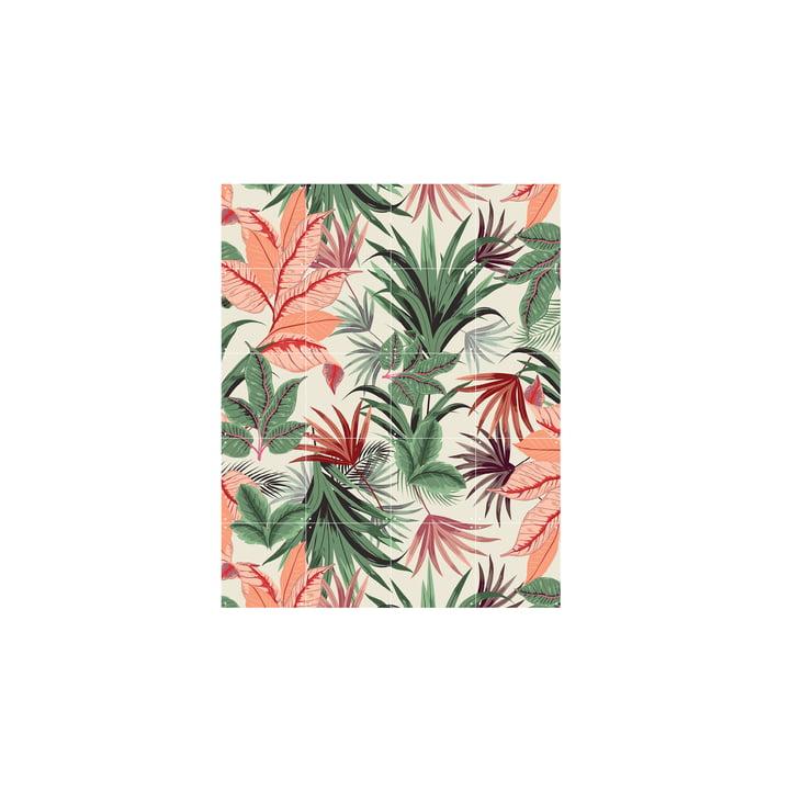 Jungle rose 80 x 100 cm de IXXI