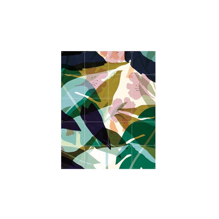 Feuilles (Lotte Dirks) 80 x 100 cm d'IXXI