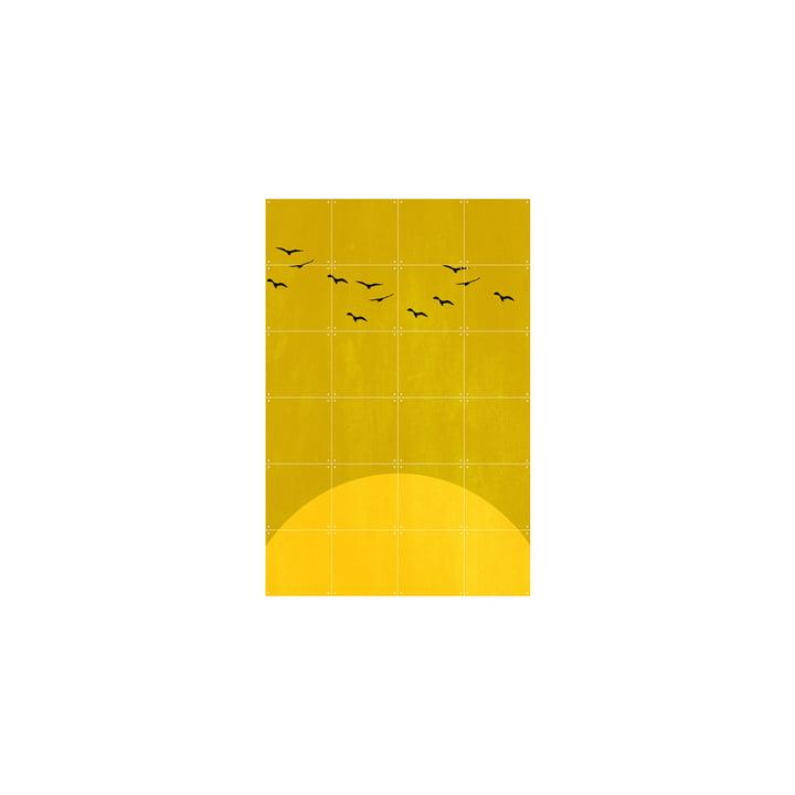 Sundance Affiche de IXXI en 80 x 120 cm