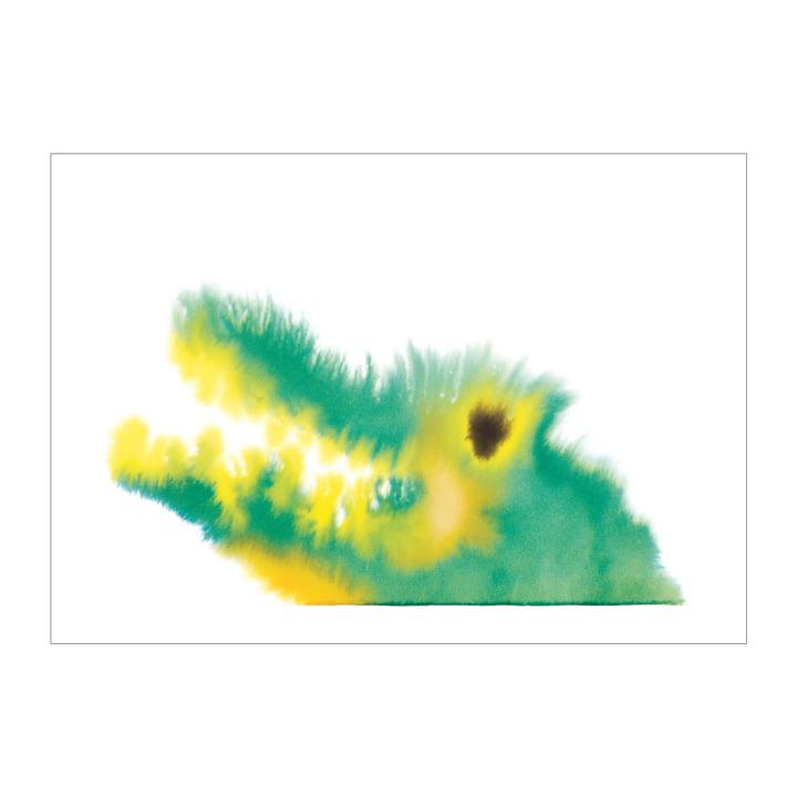 Poster crocodile 50 x 67,8 cm de The Wrong Shop en multicolore
