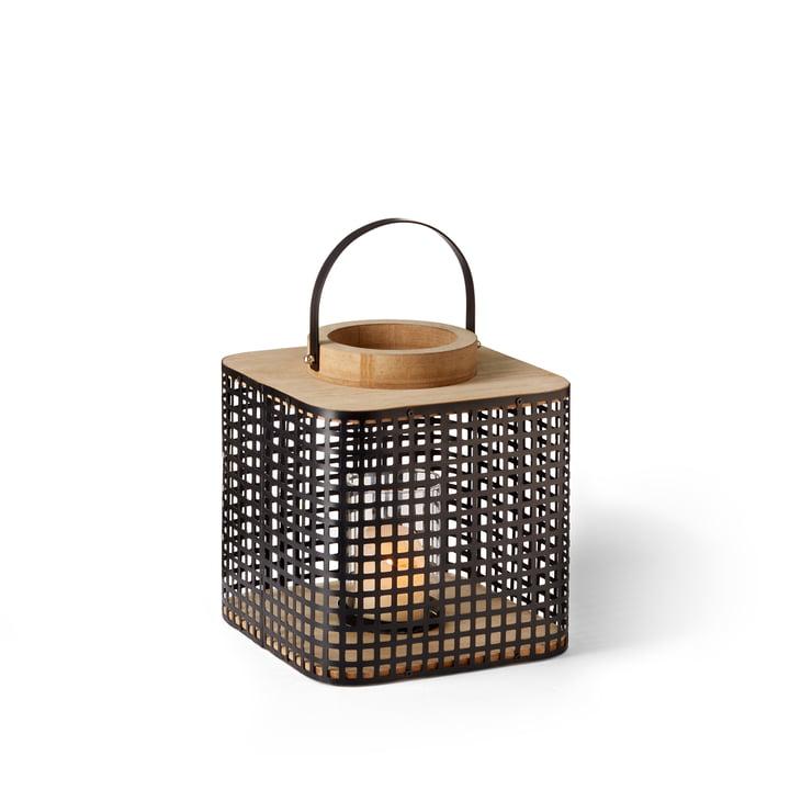La lanterne Asgar de Philippi , S, clair