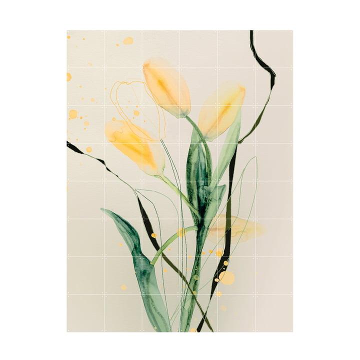 Tulip Jaune Murale 120 x 160 cm de IXXI