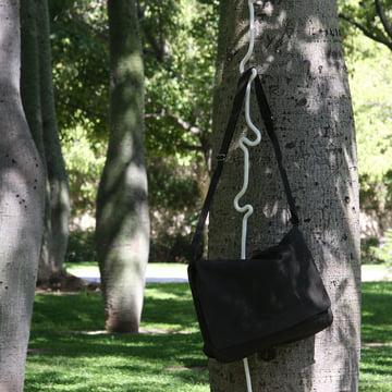 Roberope, arbre
