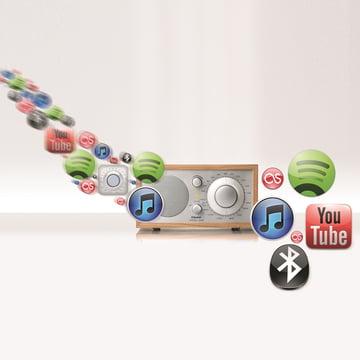 Tivoli Audio - Model One BT, cerisier - fonctions possibles