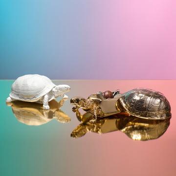 Areaware - Turtle Box, blanc, doré